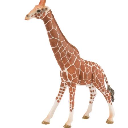 Žirafa tėtis Schleich